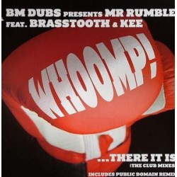 BM DUBS presents MR RUMBLE feat BRASSTOOTH & KEE