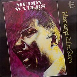 muddy waters mississippi rollin stone
